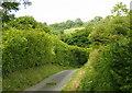 ST7167 : 2008 : Blind lane near Upper Weston, Bath by Maurice Pullin