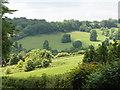 SU7792 : Chilterns countryside near Chequers Manor Farm by David Hawgood