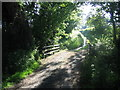 SX1999 : Approaching the bridge over the Wanson Water by Phil Williams