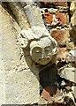 TL2676 : Stone corbel, St Peter's, Kings Ripton by Simon Huguet