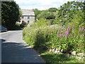 SW7230 : Cottage at Trewardreva Mill by Rod Allday