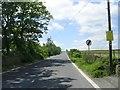SE0635 : Trough Lane by Betty Longbottom