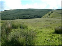 NX3097 : Towards Braker Hill by Mary and Angus Hogg