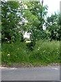 SP7333 : Public Footpath by Mr Biz