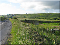 R0896 : Field and crib along the R479 road by C Michael Hogan