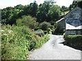 SX1452 : Cornish hamlet by Anne