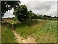SP5200 : Path to Radley by Derek Harper