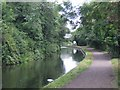 SO8886 : Stourbridge Branch Canal by John M