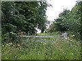 TL3056 : Disused farm gate by Keith Edkins