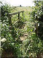 TL1096 : Footpath Bridge by Michael Trolove
