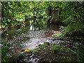 NS3368 : Green Water : Week 27