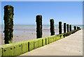 TQ0000 : Groyne, Atherington Beach : Week 28
