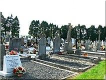 N7213 : Kildare cemetery by James Allan