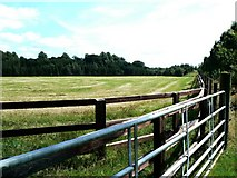 N8808 : Stud farm fencing at Gaganstown by James Allan