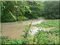 SE3001 : Crane Moor Dike in Flood - June 2007 by Wendy North