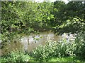 SO5968 : River Teme, Burford by Richard Webb