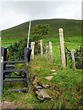 Q5002 : Stile on the Dingle Way by Sharon Loxton
