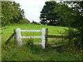 SE2901 : White fence near Edgecliffe Farm, Sim Hill by Wendy North