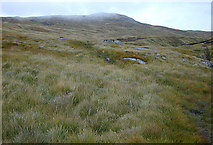 NN4780 : South west slopes of Creag Pitridh by Nigel Brown
