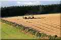 NT5325 : Harvesting at Lilliesleaf : Week 33