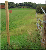 SE8823 : The Public Footpath to Alkborough by David Wright