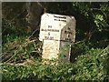 TF1027 : Milestone, just northeast of Dunsby by Brian Green