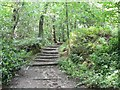 SE0838 : Footpath, St Ives Estate, Harden by Humphrey Bolton