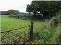 SU8898 : Footpath off Copes Lane by Shaun Ferguson