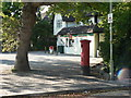 SZ0596 : Bearwood: postbox № BH11 262, Magna Road by Chris Downer