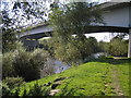 SJ5213 : River Severn, Shrewsbury A49 bypass road bridge, downstream bridge of two bridges on bypass by kevin skidmore