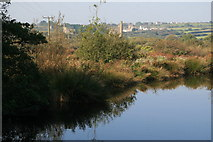 SW6738 : Pond by the Shire Horse & Carriage Museum by Chris Allen