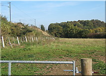 TM1440 : Field by railway embankment by Andrew Hill