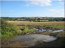 O1160 : Bodingtown, Co. Meath by Kieran Campbell