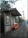 SZ6599 : Alarming sight in Goldsmith Avenue by Basher Eyre