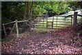 SO3480 : Unusual stile at  a firmly fixed gate by Derek Reynolds