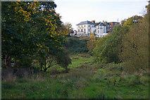 TQ2686 : Hampstead Heath by Martin Addison