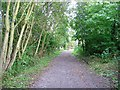 NZ3346 : Footpath following disused railway track by Roger Smith