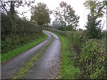C2408 : Road at Corkey by Kenneth  Allen