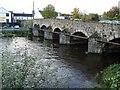 N9732 : Bridge Over the River Liffey, Celbridge by Ian Paterson