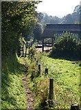 SX7962 : Footpath, Dartington by Derek Harper