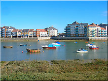 TQ2105 : River Adur by Simon Carey