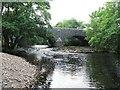 NR8694 : River Add by Rich Tea