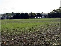 SO9250 : Breach Farm by Peter Whatley