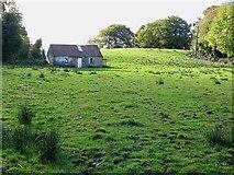 N3858 : Derelict Cottage by kevin higgins
