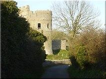 SN0403 : Carew Castle by Angela Jones