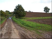 SO7334 : Clencher's Mill Lane, towards Bromesberrow by Pauline E