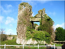 S9676 : Clonmore castle by liam murphy