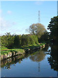 SO8687 : Staffordshire and Worcestershire Canal north of Prestwood, Staffordshire by Roger  Kidd