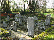 S9676 : Clonmore graveyard by liam murphy