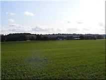 TM3876 : Farmland next to the B1117 Walpole Road by Adrian Cable